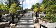 Wiarton Flamed Steps